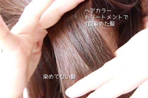 染めた髪の毛と染めてない髪の毛