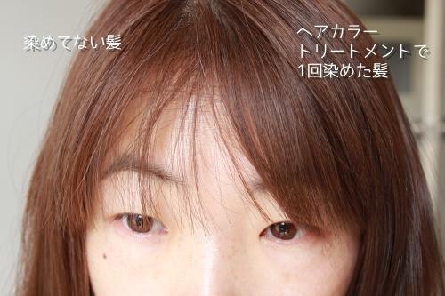 染めた髪の毛と比較
