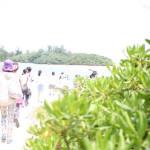 川平湾グラスボートツアーに参加!