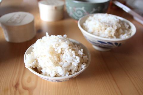 感動の米玄米