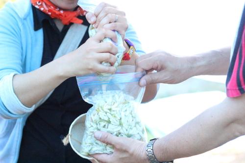 抽出したオリーブオイルをさらにみかんの花ジップロックに入れる