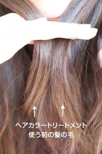 ヘアカラートリートメントを使う前の髪の毛