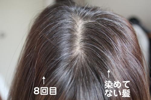 kirari_day8_10001