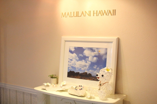 malulani-hawaii0018