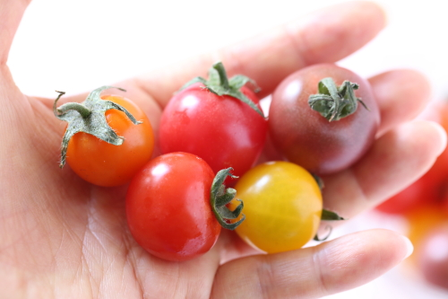 tomato30003