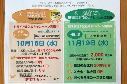 daichi0010