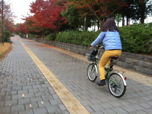楽天で購入した自転車その後