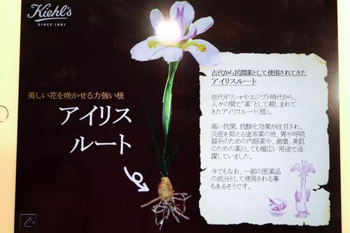 kiehls-iris-extract-7