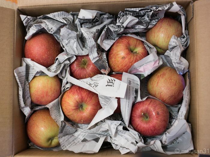 訳ありりんご1箱買いました
